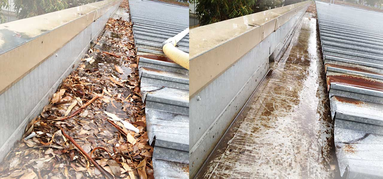 Before & After - roof gutter cleaning in Templestowe, Victoria